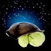 Obrázek z Magická želva která svítí, uklidňuje zútulní pokoj
