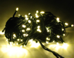 Obrázek z Vánoční LED osvětlení, světelný řetěz, venkovní 250 ks/30 m