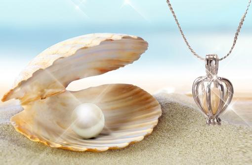 Obrázek z Perla přání v perlorodce