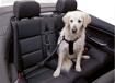 Obrázek z Bezpečnostní pás pro psa