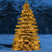 Obrázek z LED vánoční řetěz - ježek, venkovní 1000 LED/ 25 m s flash
