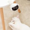 Obrázek z Interaktivní hračka pro kočky
