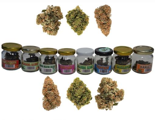Obrázek z CBD Cannabis 2g ve skle