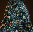 Obrázek z Vánoční LED osvětlení, světelný řetěz, venkovní 1000 led/105 m